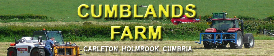 Cumblands Farm Carlton Holmrook Cumbria